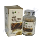 Reishi - Cordyceps Extract 80 kapslí