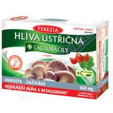 TEREZIA Hlíva ústřičná s lactobacily+vit. C cps. 60