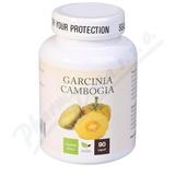 Natural Medicaments Garcinia Cambogia cps. 90