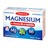 TEREZIA Magnesium+vitamin B6 a meduňka cps. 30