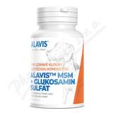 ALAVIS MSM+Glukosamin sulfát tbl. 60
