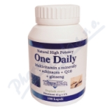 TheraTech 04 One Daily vit. +min. +echi. +Q10 cps. 100