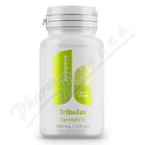 Tribulus terrestris 400mg cps. 120