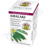 Amalaki - antioxidant přírodní vitamín C cps. 60