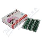 Menoflavon tob. 30 pro ženy